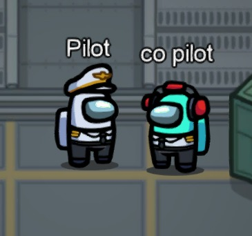 Pilot Co Pilot best names in Among Us